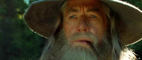 Gandalf-the-Grey-Fellowship-of-the-Ring-gandalf-35160271-500-211.jpg