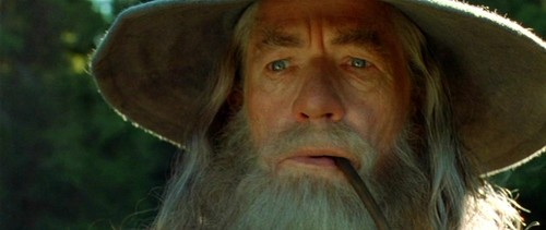 Gandalf-the-Grey-Fellowship-of-the-Ring-gandalf-35160271-500-211.jpg