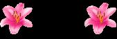 keepflower